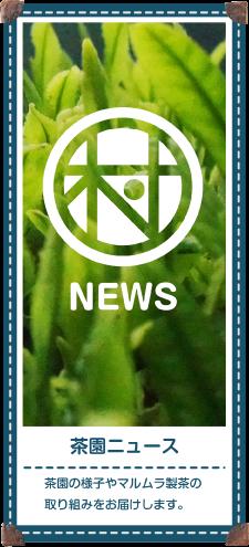 茶園ニュース